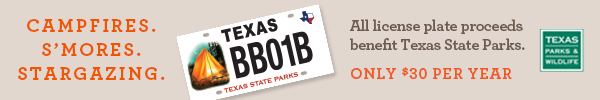License plate with tent benefits state parks, link