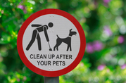 Pick Up Pet Waste