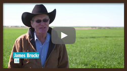 Video for Homegrown Hero, Brockriede Brothers and Lalk Brothers Farms