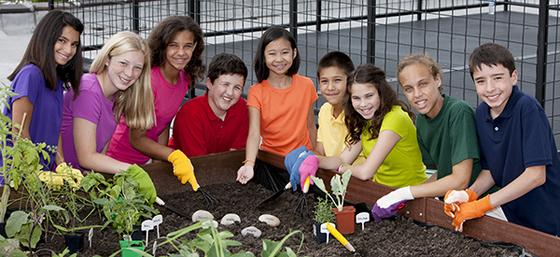 Kids Around a Garden