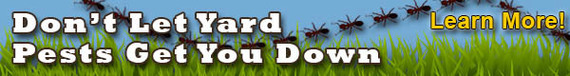 Learn About Yard Pests