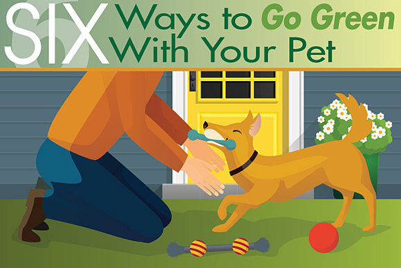 Six Ways to Go Green With Your Pet