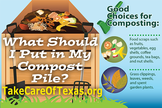 What Should I Put In My Compost Pile?