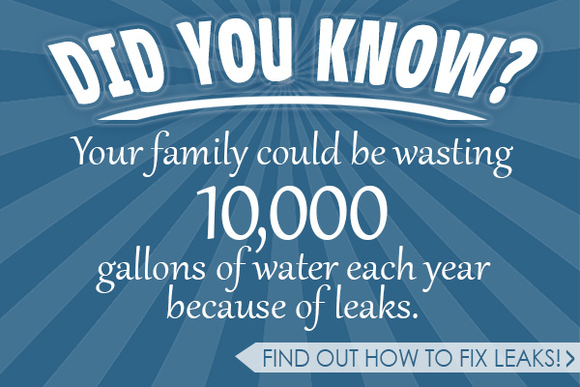 Find and Fix Leaks
