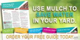 Use Mulch to Save Water in Your Yard