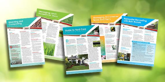 Landscape publications