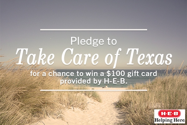 Pledge to Take Care of Texas