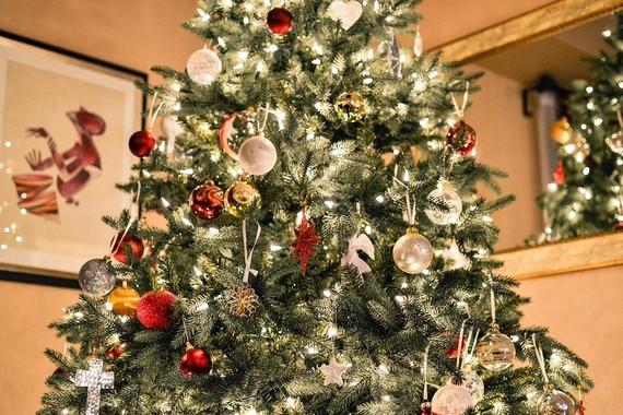 Christmas Lights on Tree