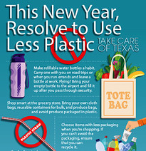 New Years Plastic Resolution Infographic