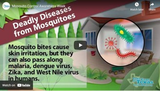 Mosquito Awareness Week Video