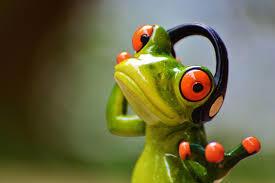 Frog wearing headphones