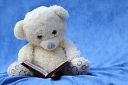 ted reading