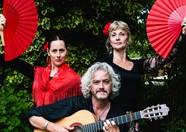flamenco magica