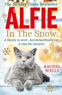 Alfie in the snow, by Rachel Wells