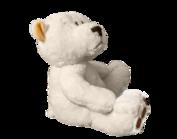 Forlorn teddy bear