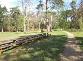 Lily Hill Park picnic bench