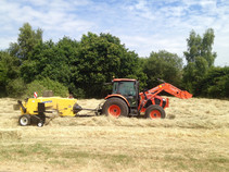 Hay baling after cutting