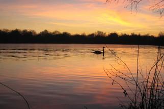 Horseshoe Lake at sunset