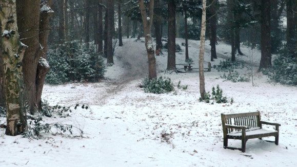 Snowy scene, Lily Hill Park