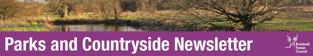 Countryside winter scene in header for newsletter