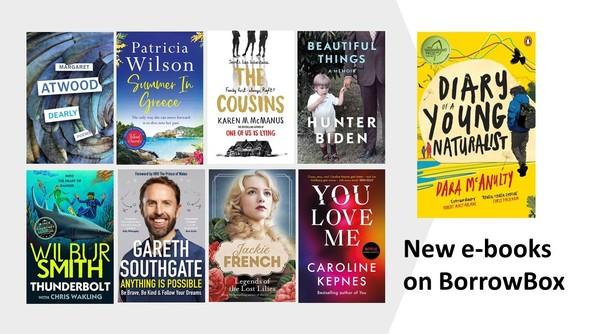 Book covers of new e-books on BorrowBox