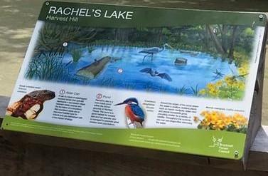New interpretation panel at Rachels' Lake