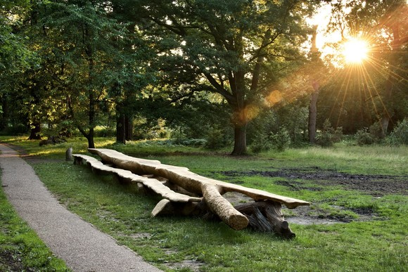 Giant new picnic table at Lily Hill Park