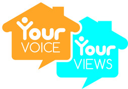 Your Voice, Your View logo