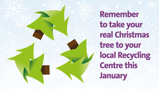 Real Christmas tree's can be recycled at recycle centres