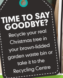 Garden waste Christmas tree