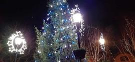 Kimberley Christmas Tree Lights