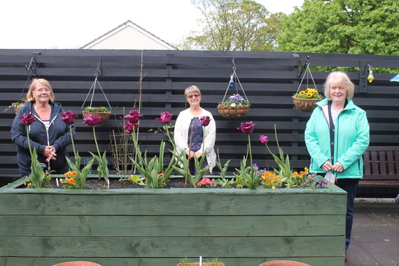 Residents standing next to the fringed tulips at cloverlands court