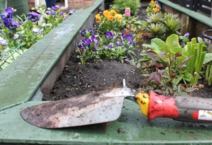Dirty Trowel next to the raised beds.