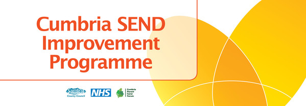 SEND improvement banner