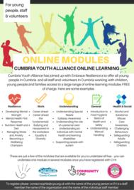 CYA online learning