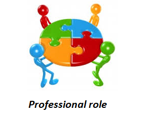 professional role