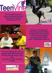 TeenVine+ poster
