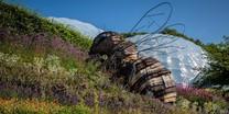 Eden Project_giant bee
