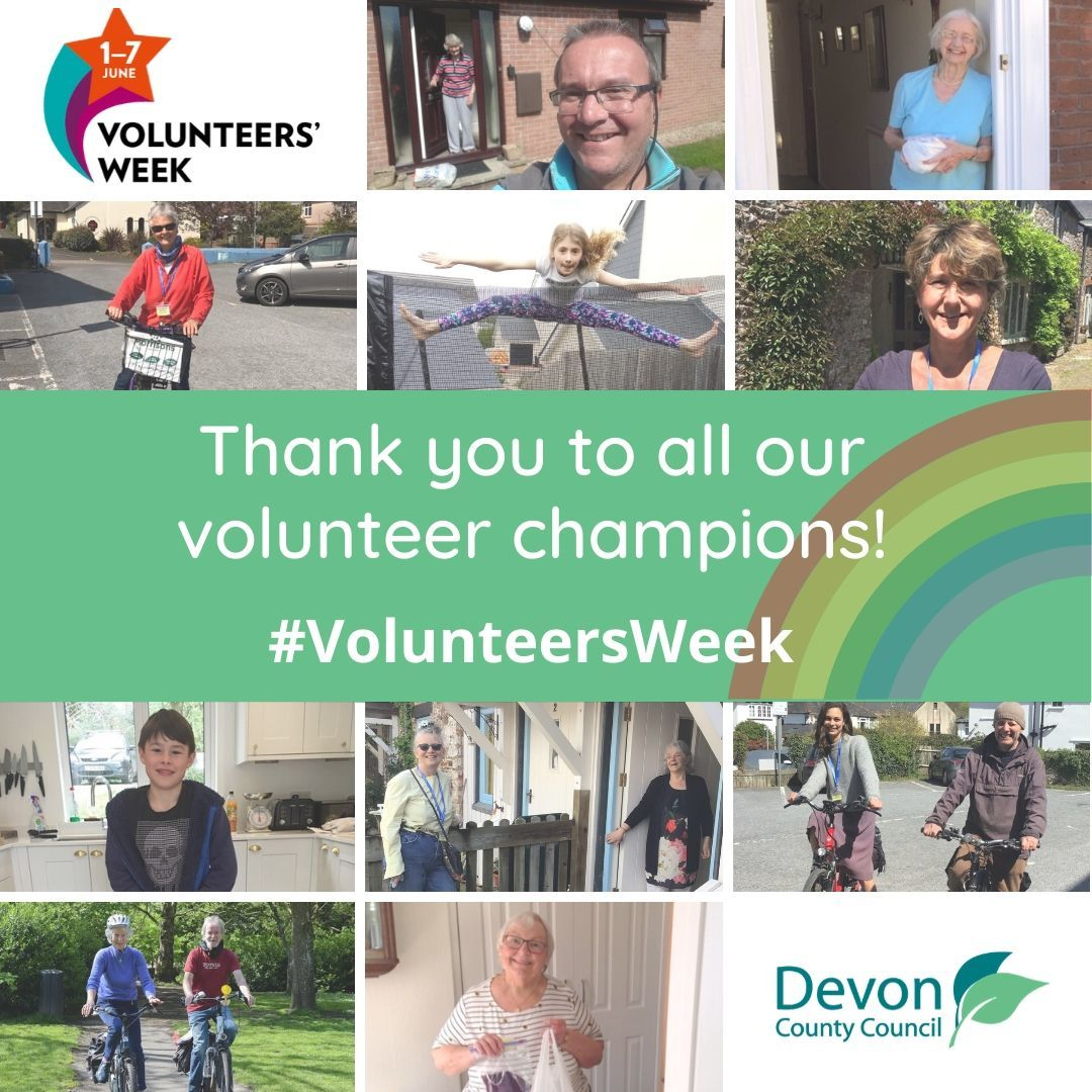 volunteer champion collage