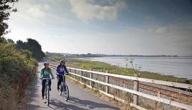 Cyclists enjoying the Exe Estuary Trail