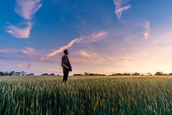 farmer standing in a field of crops looking at the sky