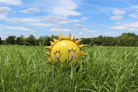 sunshine balloon in the grass on a sunny day