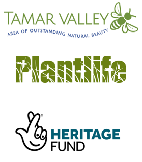 Logo for Tamar Valley, Plantlife and National Lottery