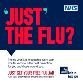 Just the flu poster large