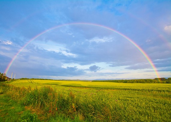 rainbow over a spring field