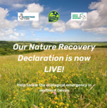 Nature recovery declaration