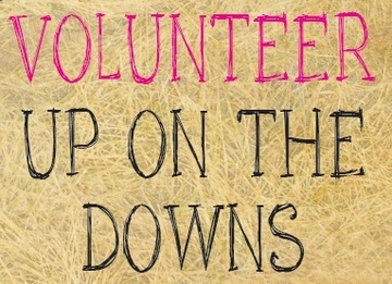 Volunteer Up on the Downs
