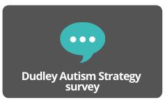 Dudley Autism Strategy  survey