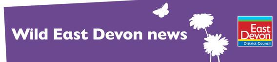 Wild East Devon news - East Devon District Council
