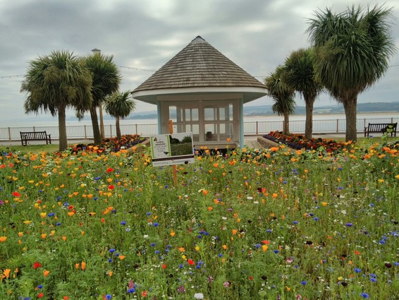 Beach Gardens in Exmouth